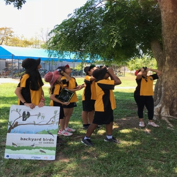 Backyard Bird Count Nightcliff Primay School Darwin 2018