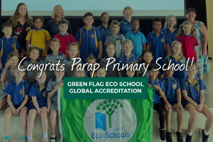Parap Primary Green Flag