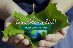 Going Green in 2021