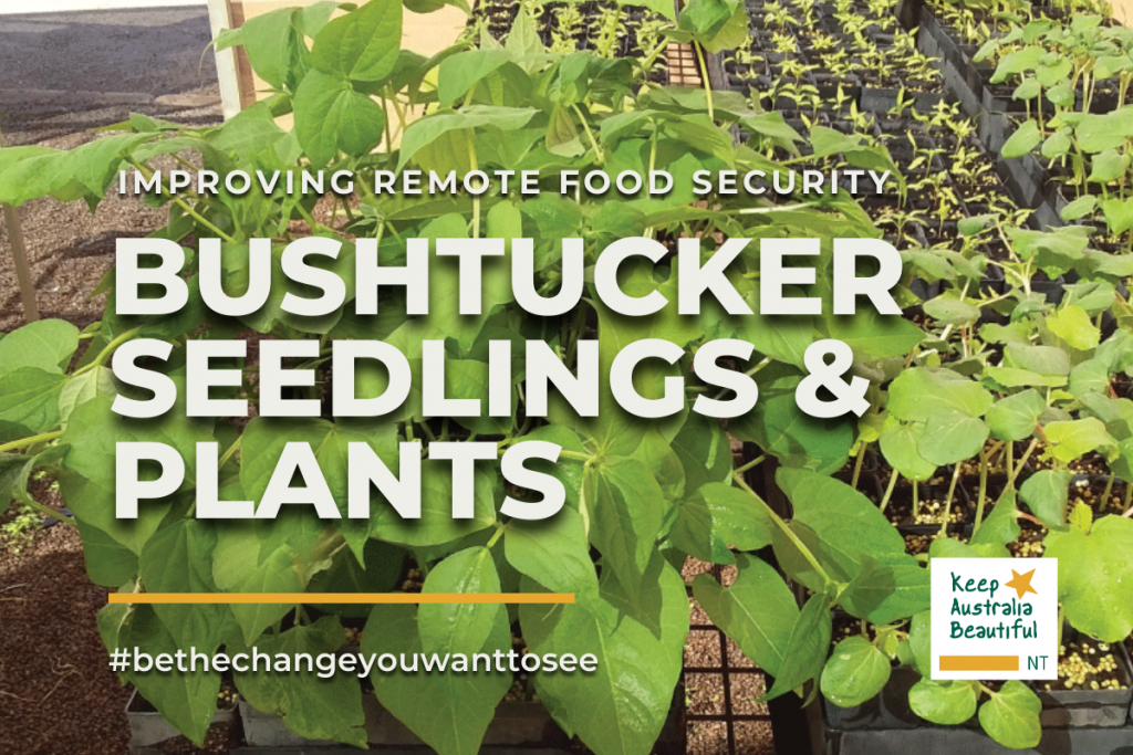 Improving Food Security in Remote Areas